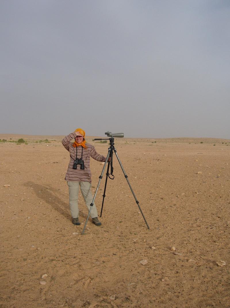 Madarászat a sivatagban. Tunézia, 2006. Fotó © Vasas András