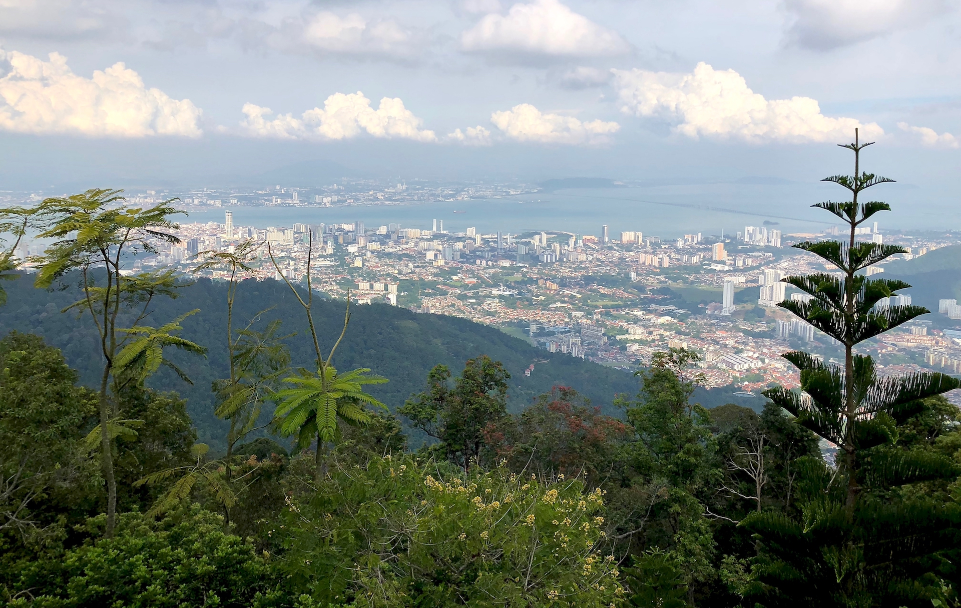 The view of George Town from Penang Hill. Photo © Szilvia Molnár