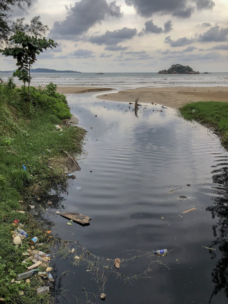 Egy átlagos trópusi eső után ez mind a tengerben úszkál. És még sok minden más. Fotó © Molnár Szilvia
