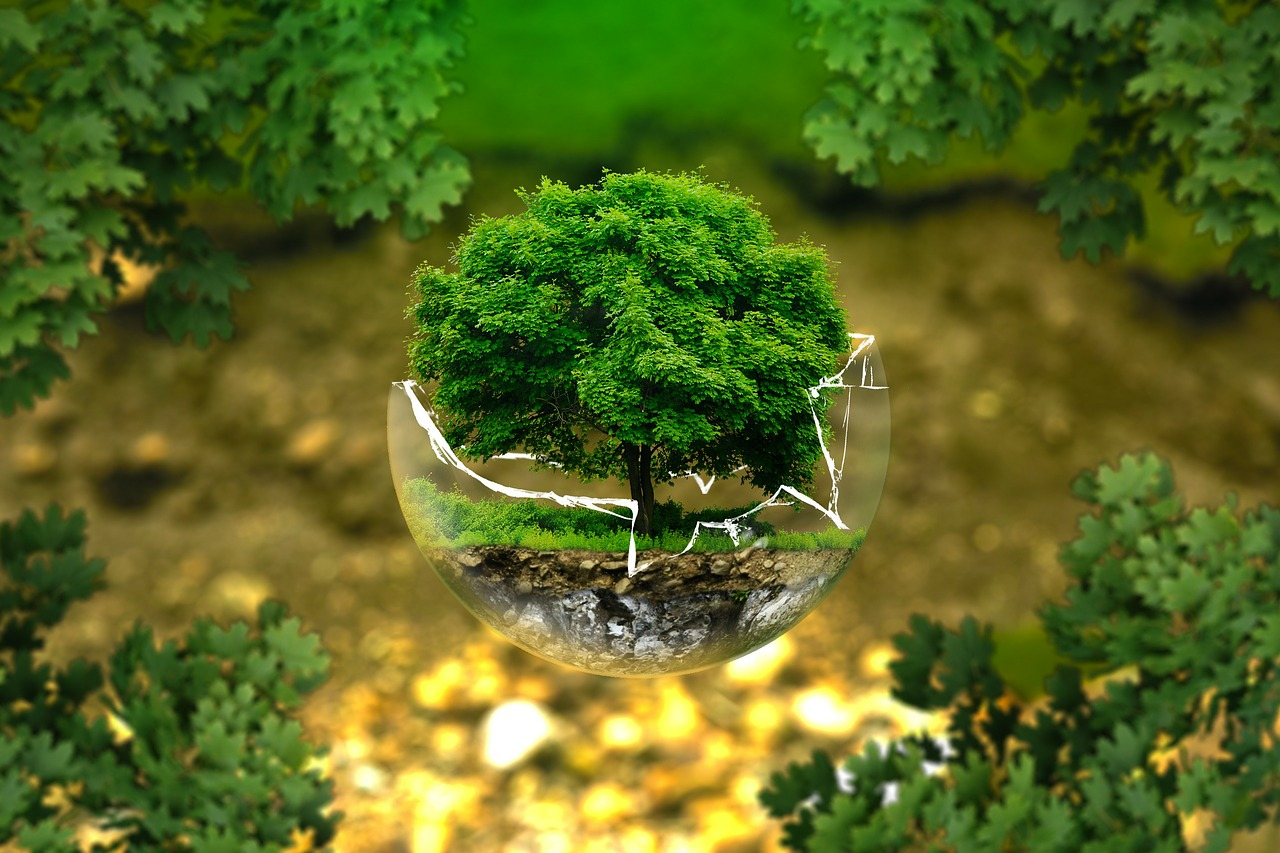 Honrar al Madre Tierra