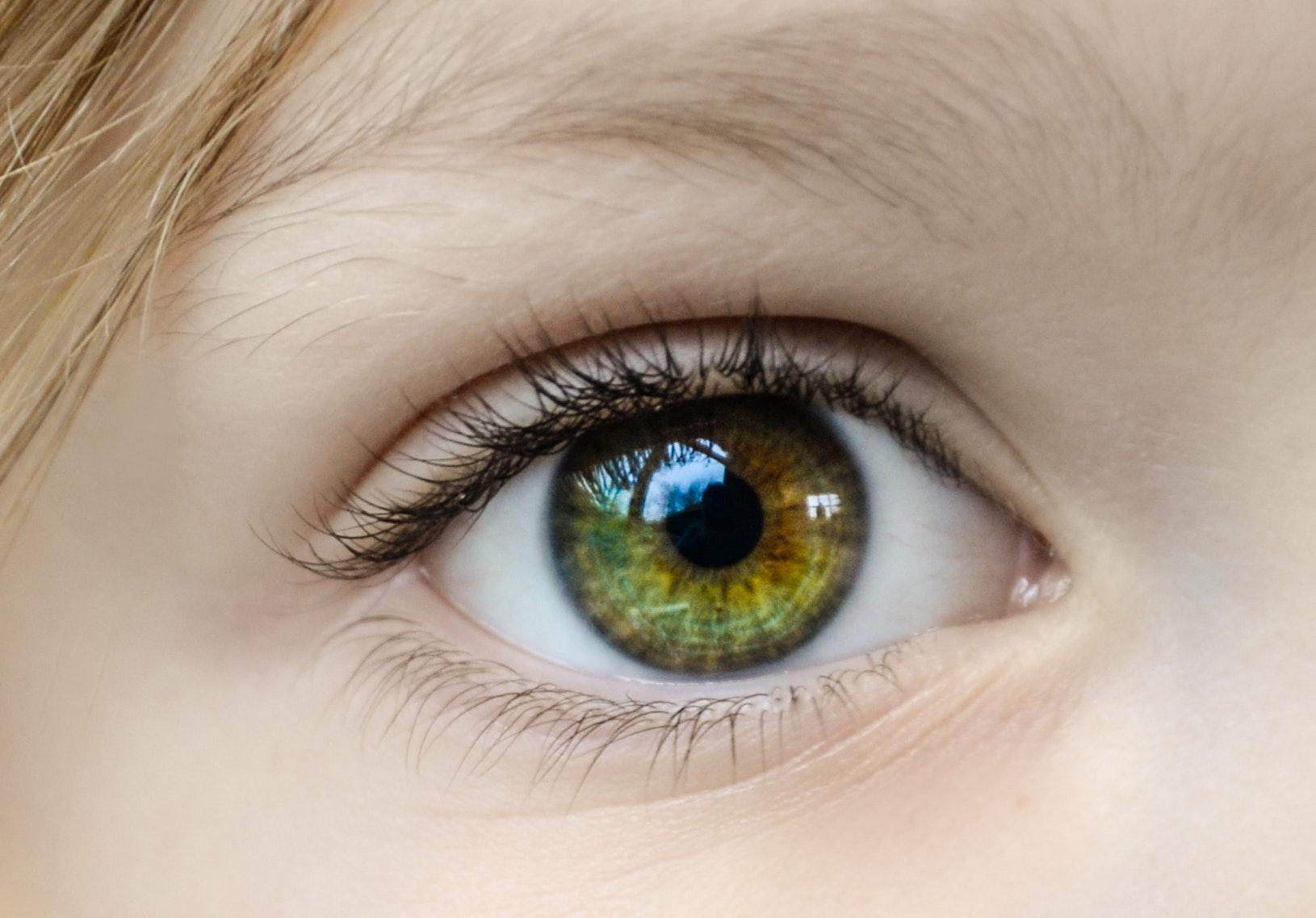 close-up-eye-eyeball-862122.jpg