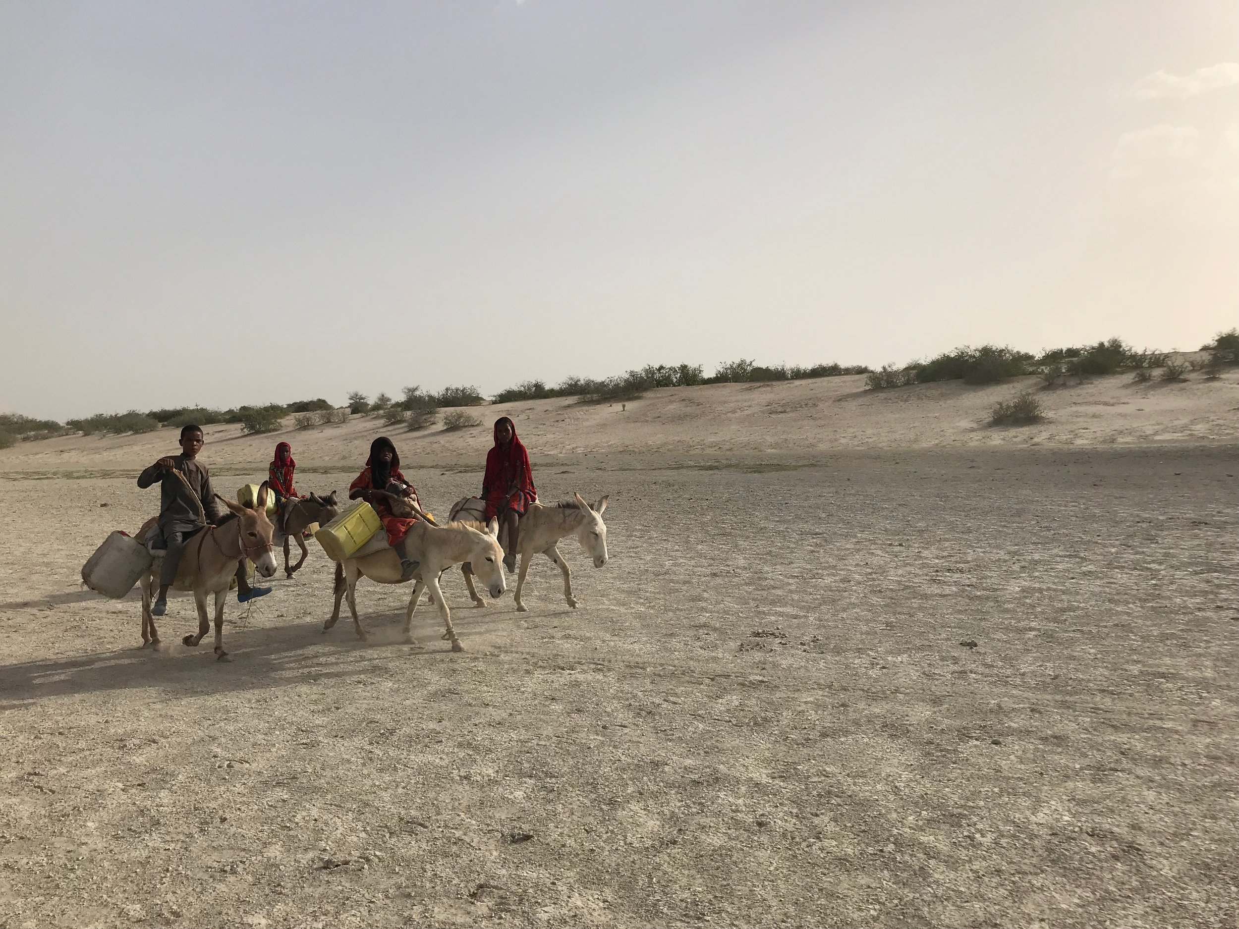In Lake Chad area survival is an exercise anchored to life.