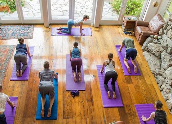 Morning Yoga - Camping at Fat Apple gives you a chance to enjoy the great outdoors, but your back may not fully appreciate it. Sunday morning you'll get the chance to relieve that tension with gentle flow yoga with Julie Drexler Johnson.