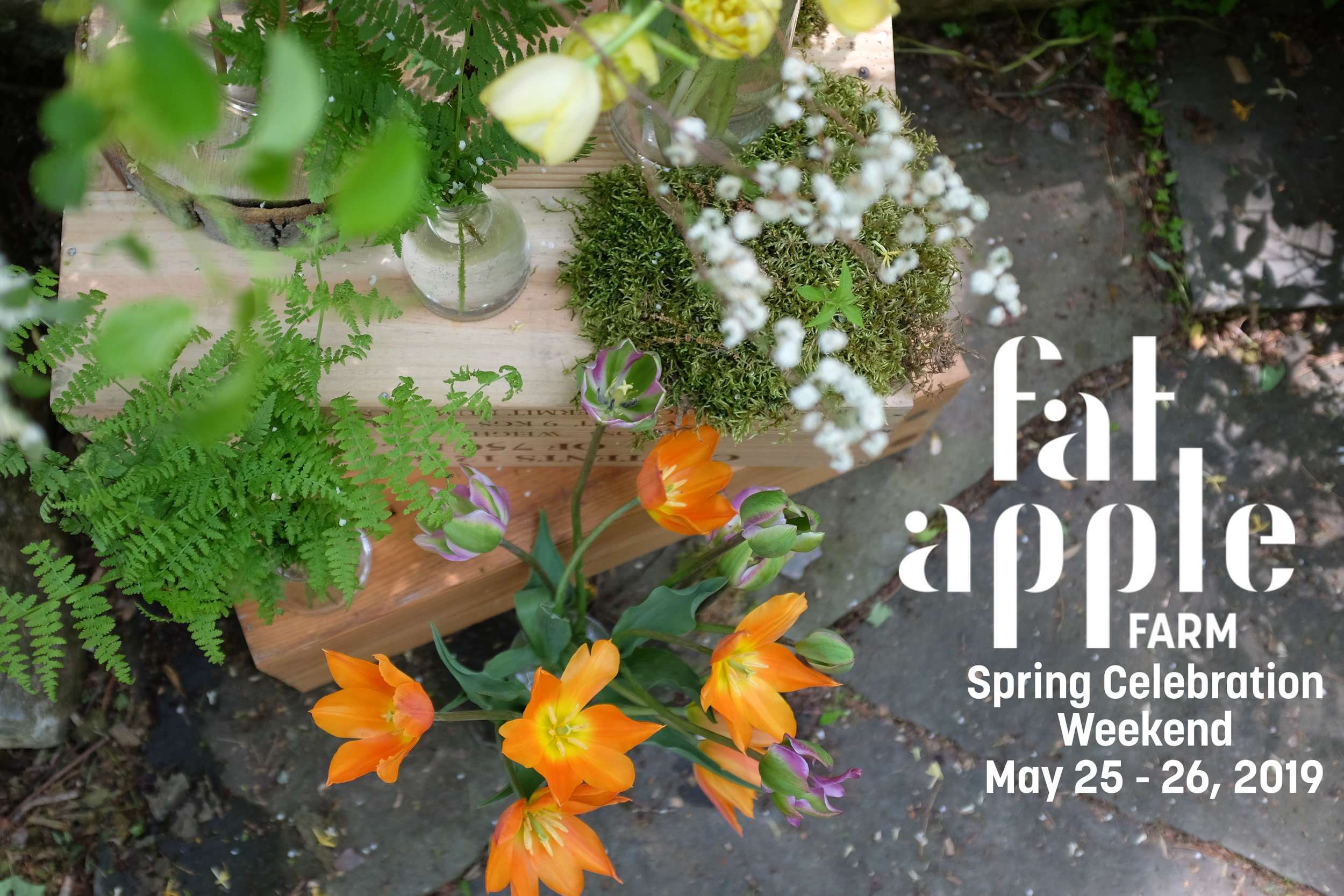 FAF Spring 2019 Event Graphic.jpg