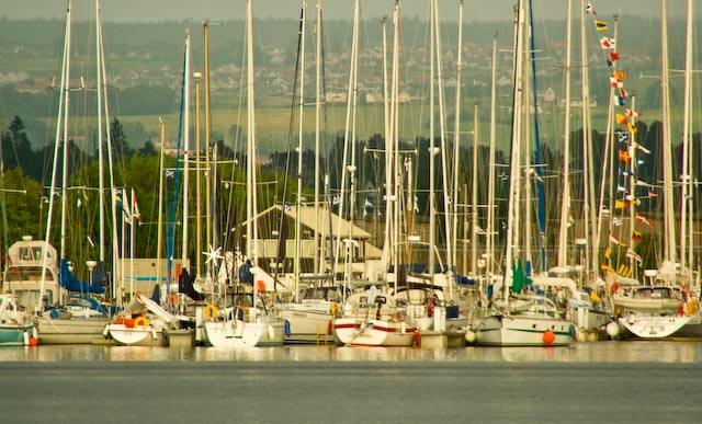 Sailboats on the Inverness Marina