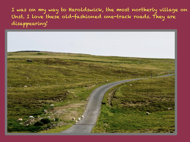 Odd Scotland PowerPointFinal Tarpon Arts NANCY edit.161.jpeg