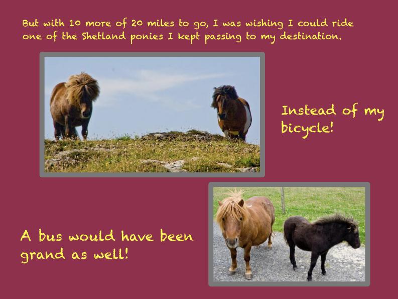 Odd Scotland PowerPointFinal Tarpon Arts NANCY edit.162.jpeg