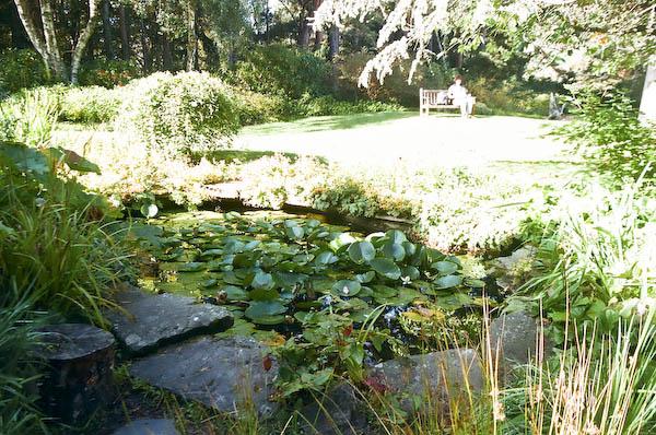 Findhorn Garden meditation.jpg