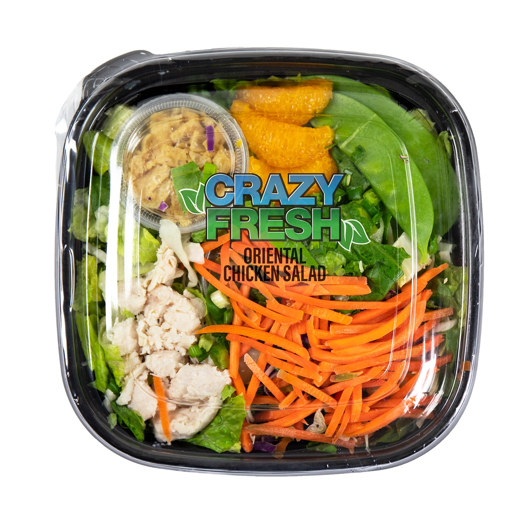 ORIENTAL CHICKEN SALAD - 10 OZ. — 81028
