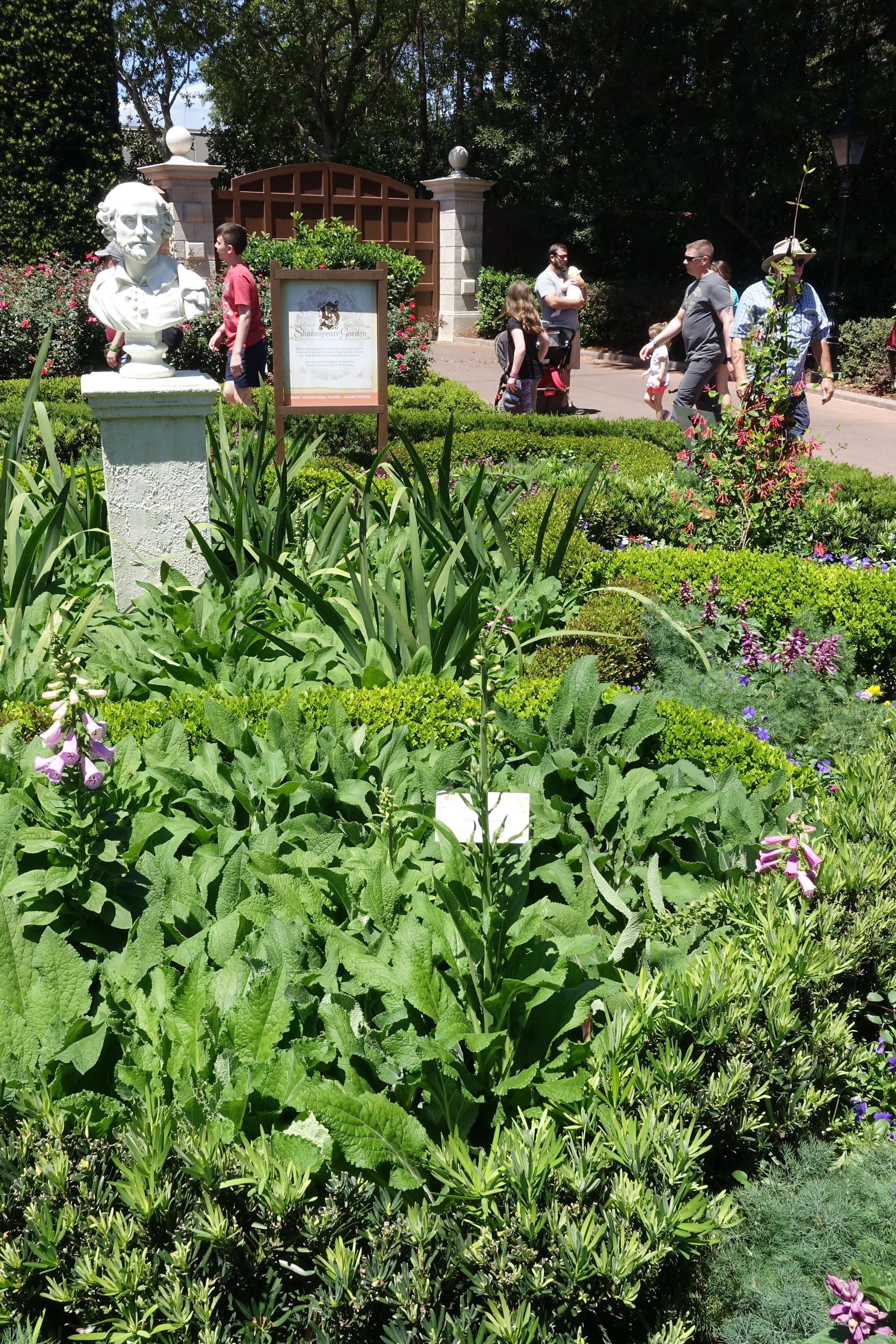 Shakespeare's garden in the England pavilion. It includes plants mentioned in his plays and sonnets with the lines displayed on placards.