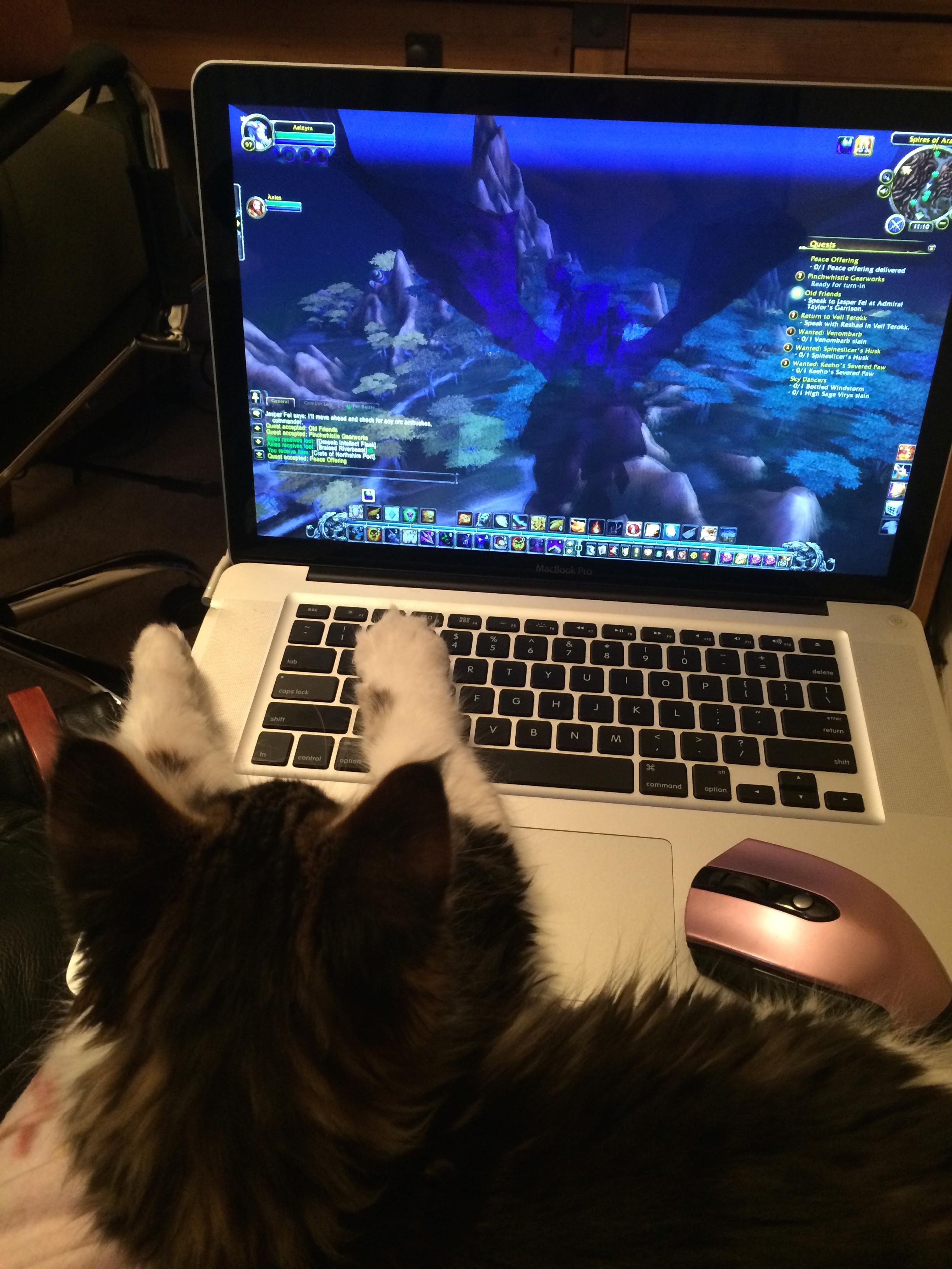 Nugget was an avid World of Warcraft player from a young age.