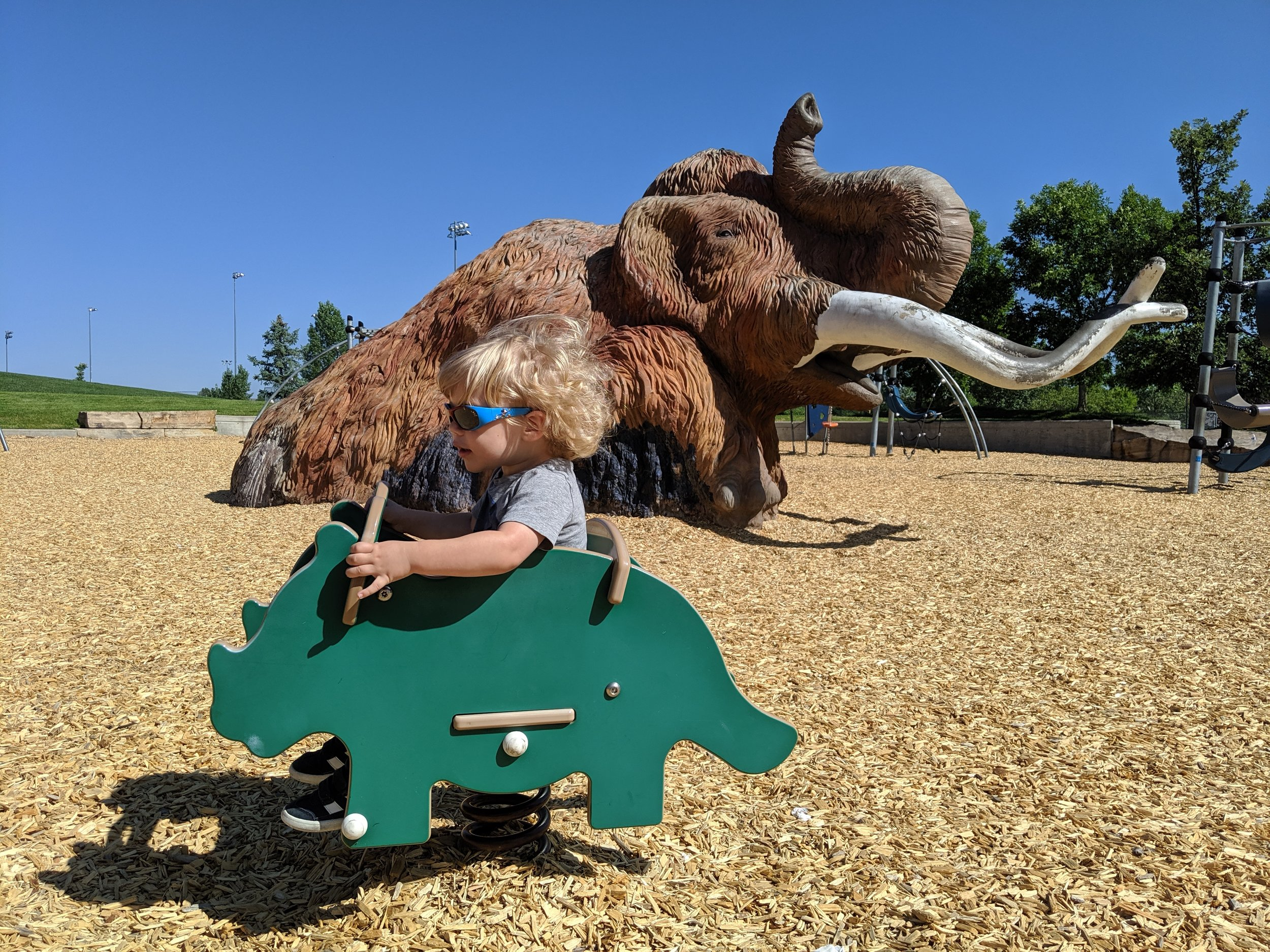 Trying out a new park in Fort Collins. This was a dinosaur themed park and it was so cool!