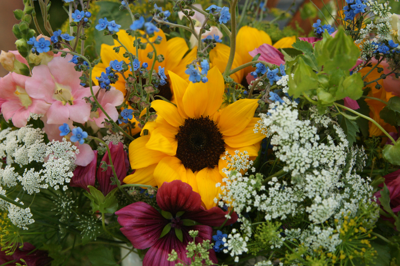Flowers at the Berthoud, Colorado Farmers' Market.