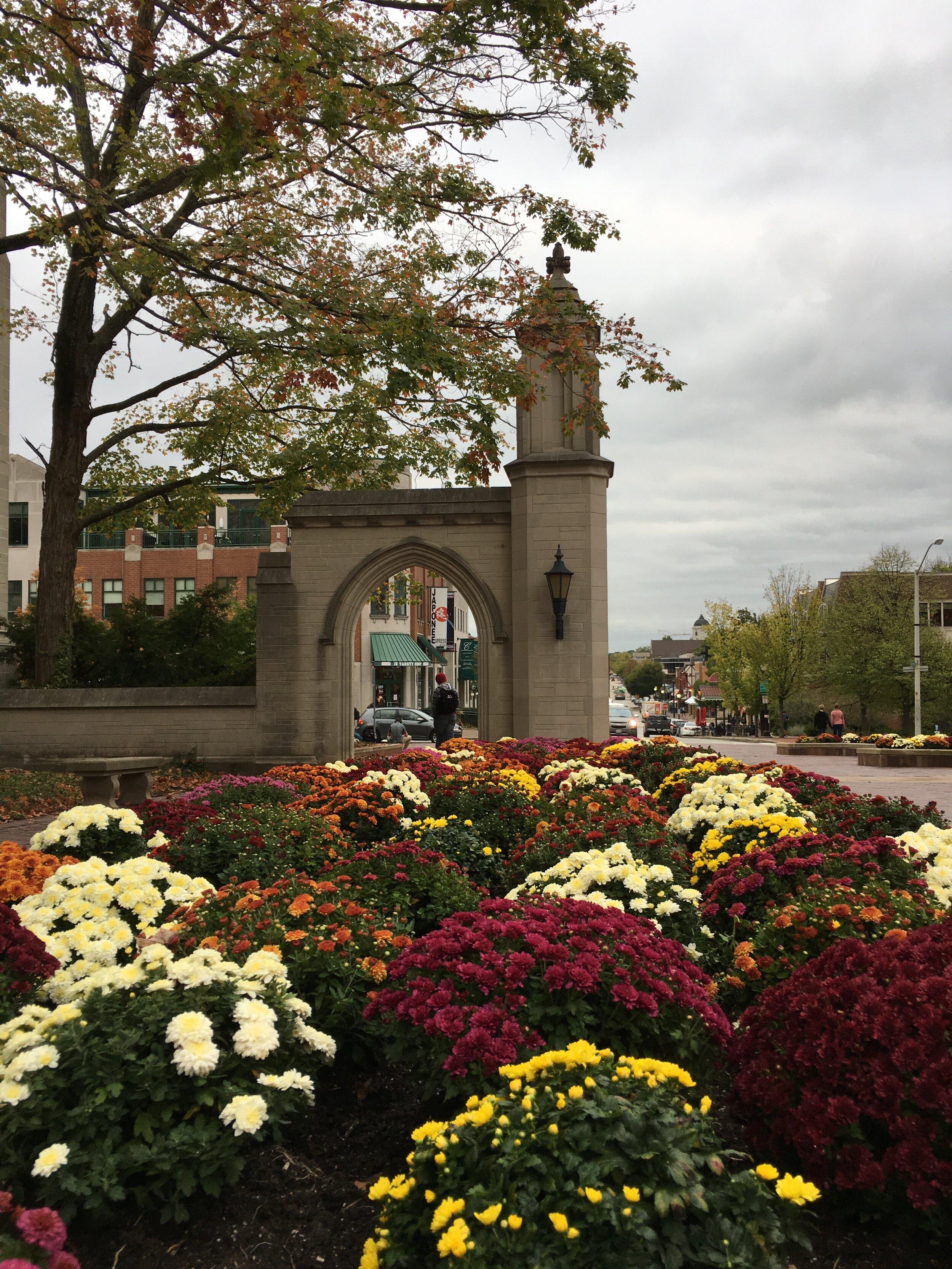 Fall at the Sample Gates, Indiana University in Bloomington, Indiana.