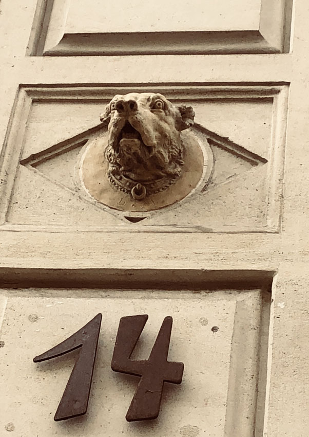 14 rue vaneau 9.jpg