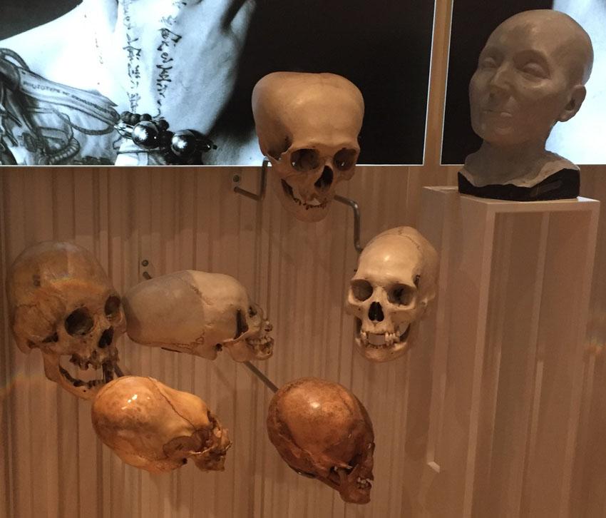 musee de l'homme 21 la-tete-en-lair.net.jpg