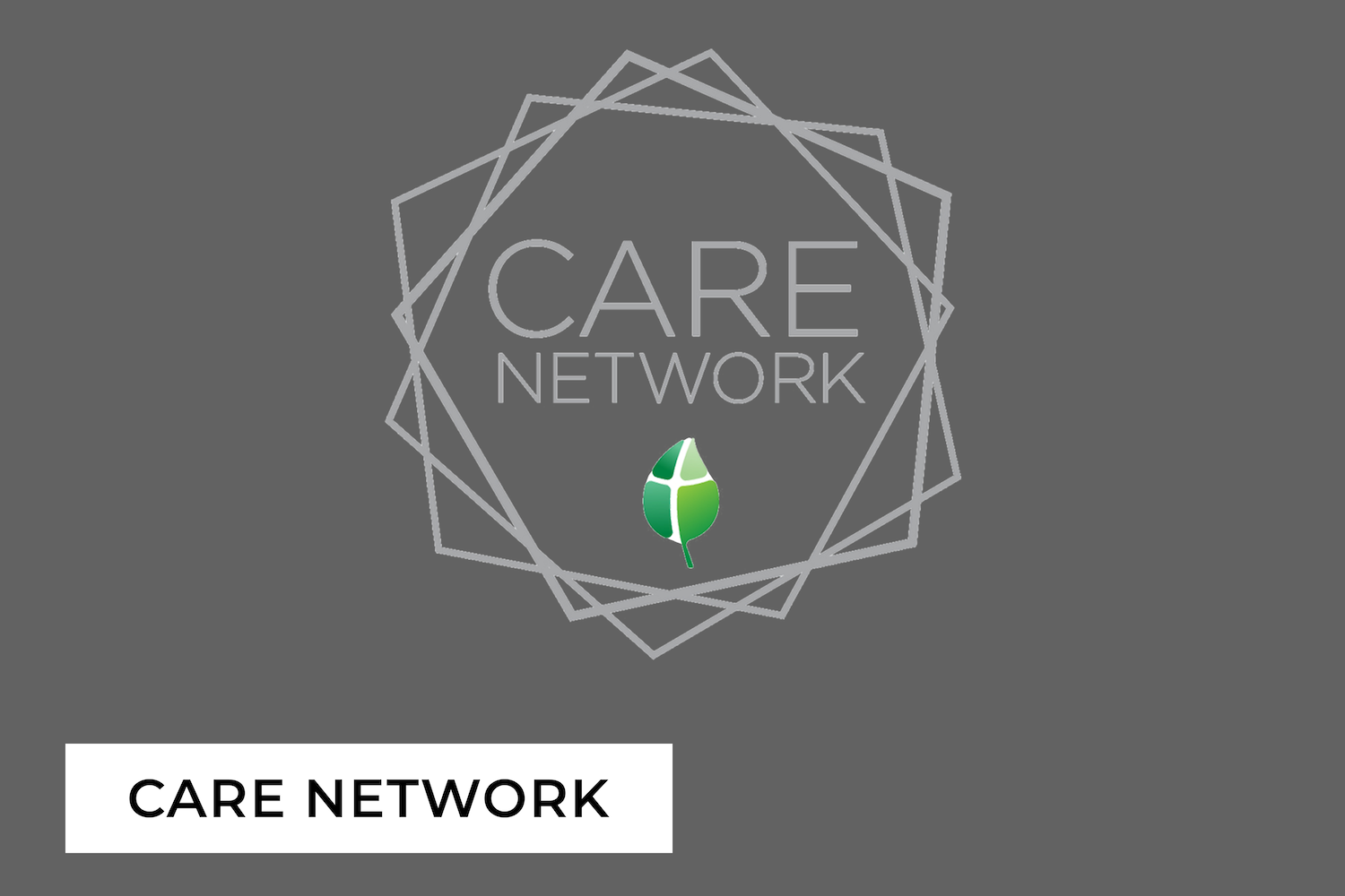 care-network copy.png