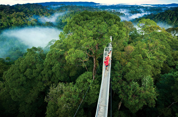 monteverde-cloud-forest-in-jaco-545214.jpg