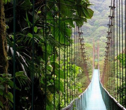 monteverde-cloud-forest-lodge-214548.jpg