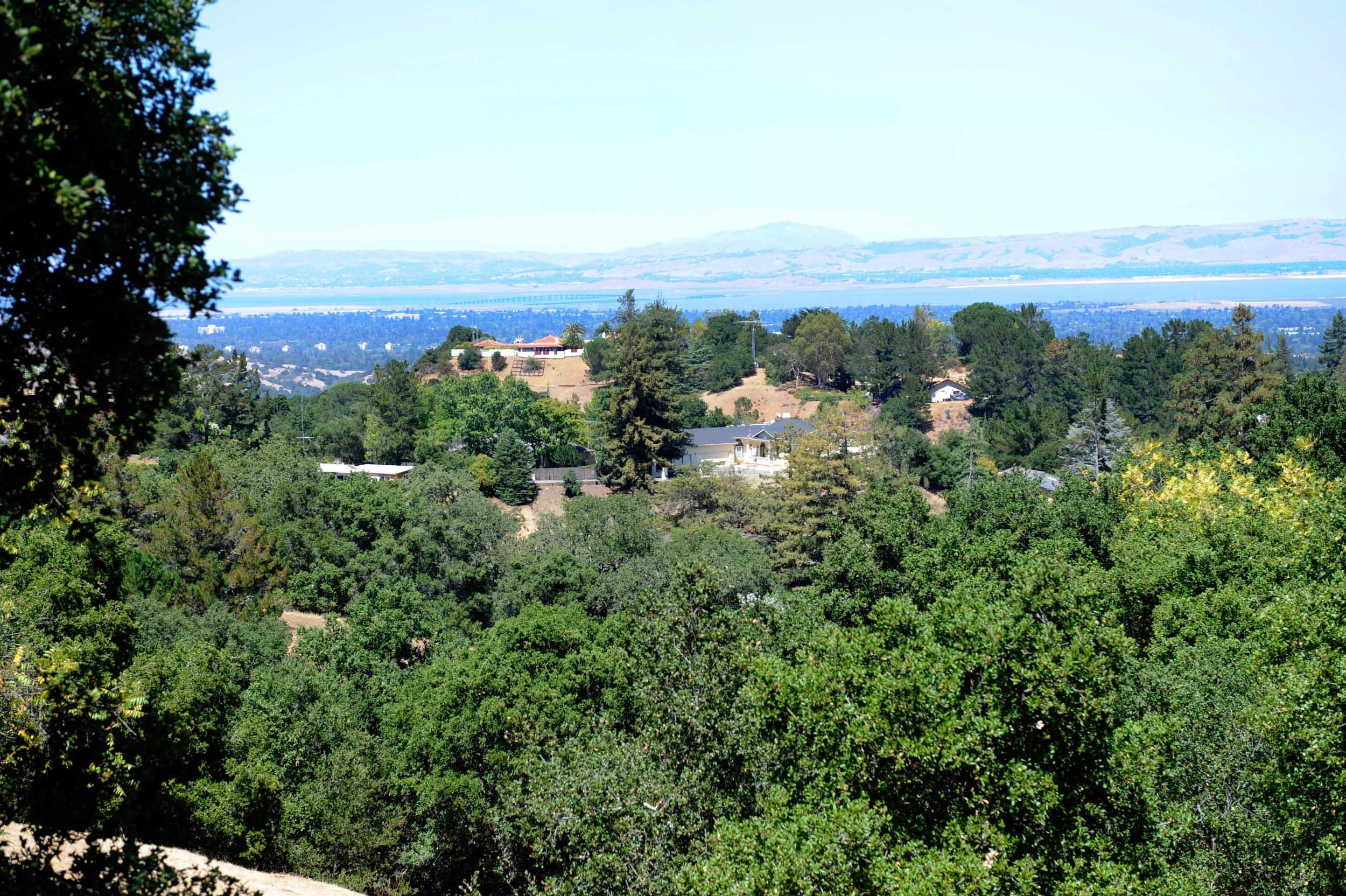 Los Altos Hills-3.jpg