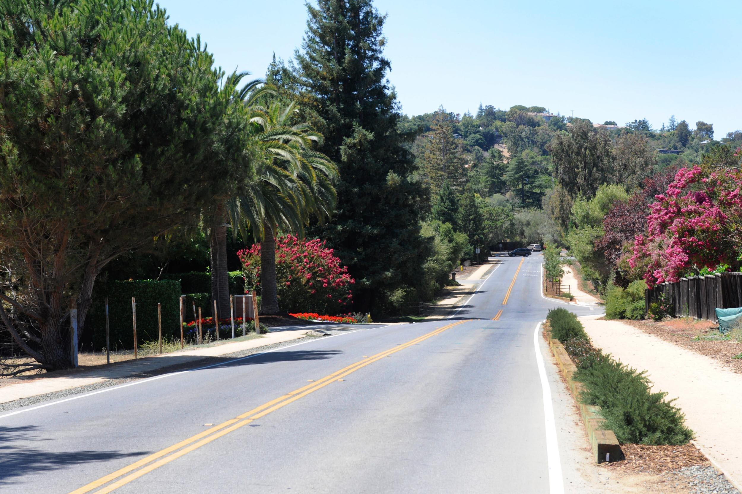 Los Altos Hills-2.jpg