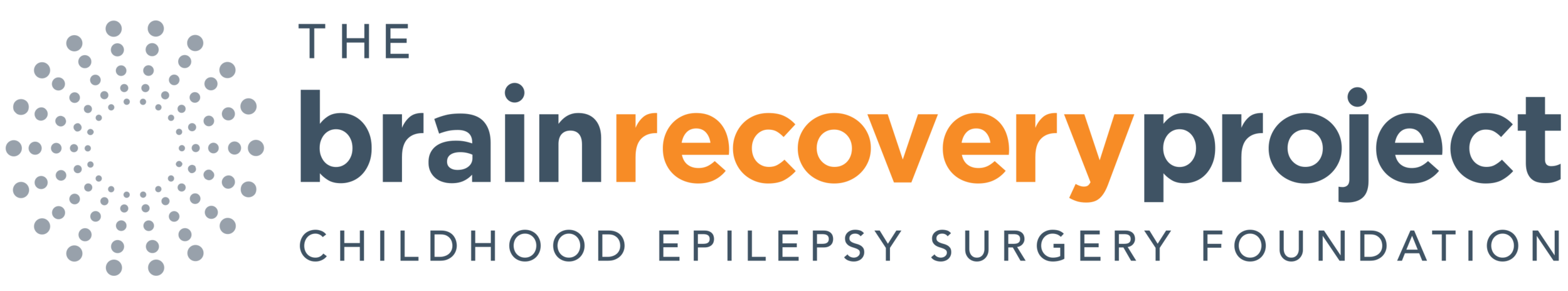 Brain Recovery Project logo.png