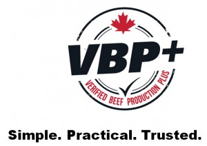vbp-logo-and-text-300x212.jpg