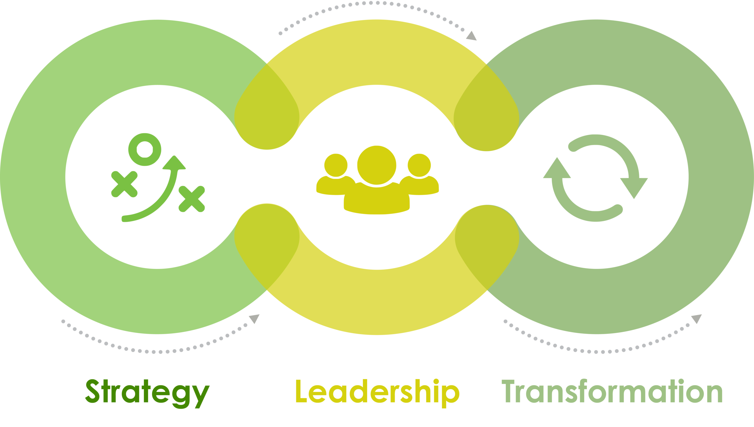 professional management consultants, strategy, leadership, transformation
