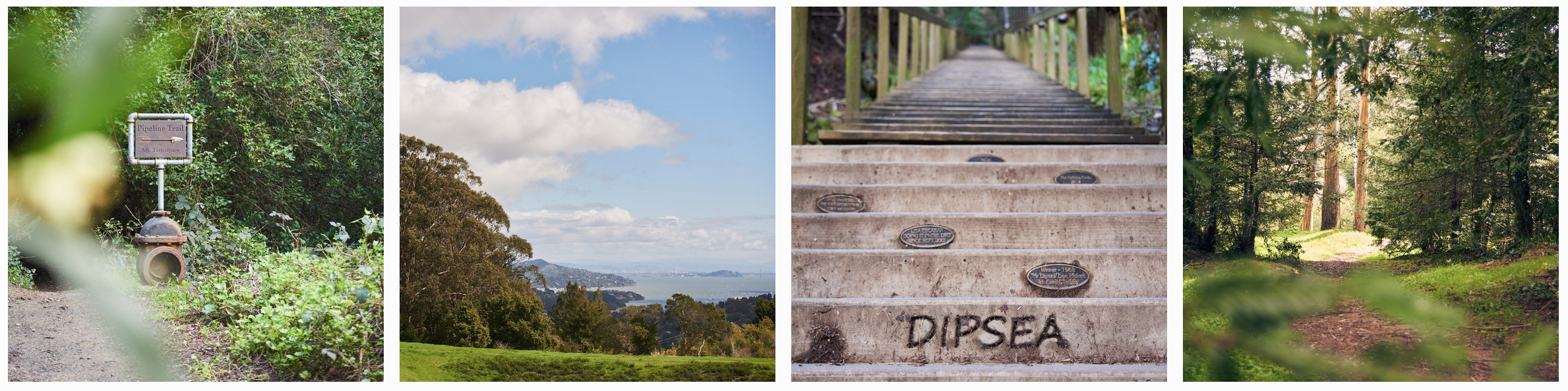 L to R: the Pipeline Trailhead, Edgewood Park open space, the Dipsea stairs, Edgewood Park trailhead