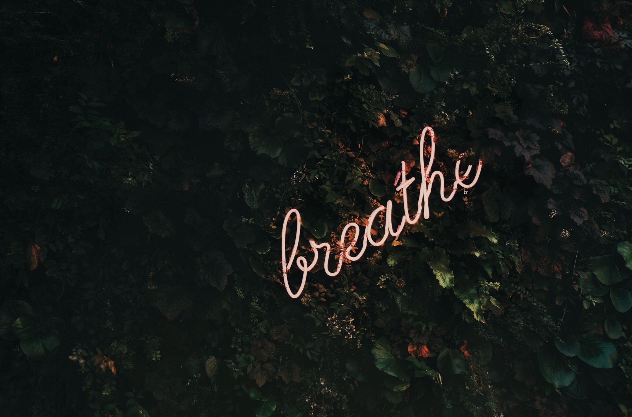 You Can Quit Your Job, Just Breathe