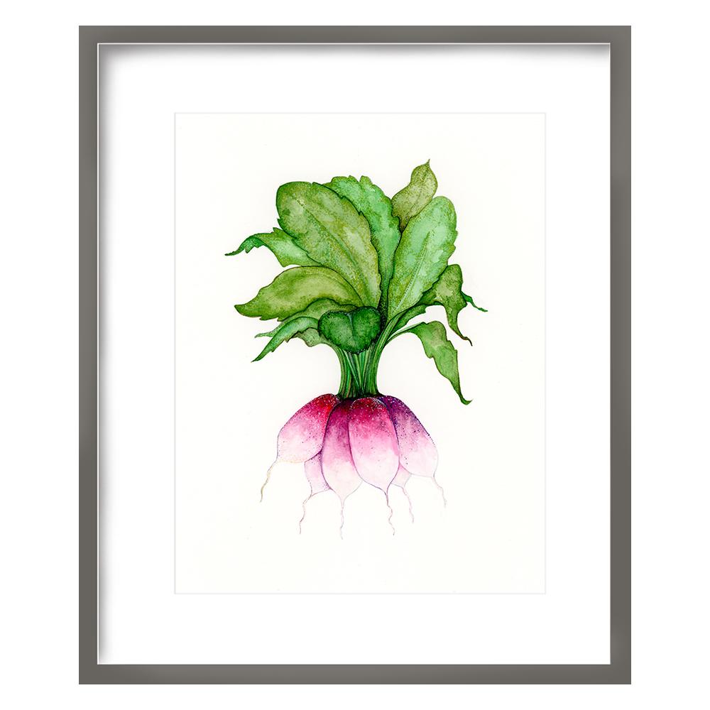 Radish Print 8x10 - $15 -