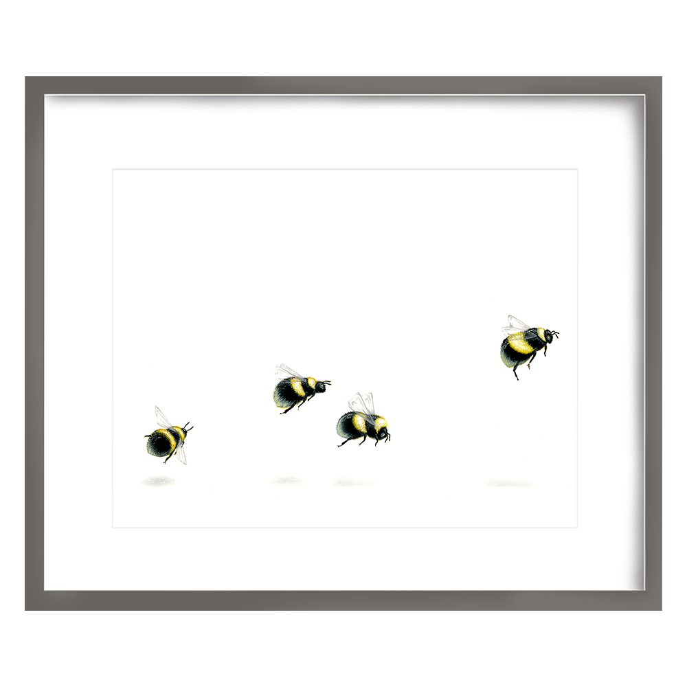 Bees Print 8x10 - $15 -