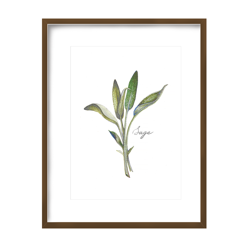 Sage Print 5x7 - $10 -