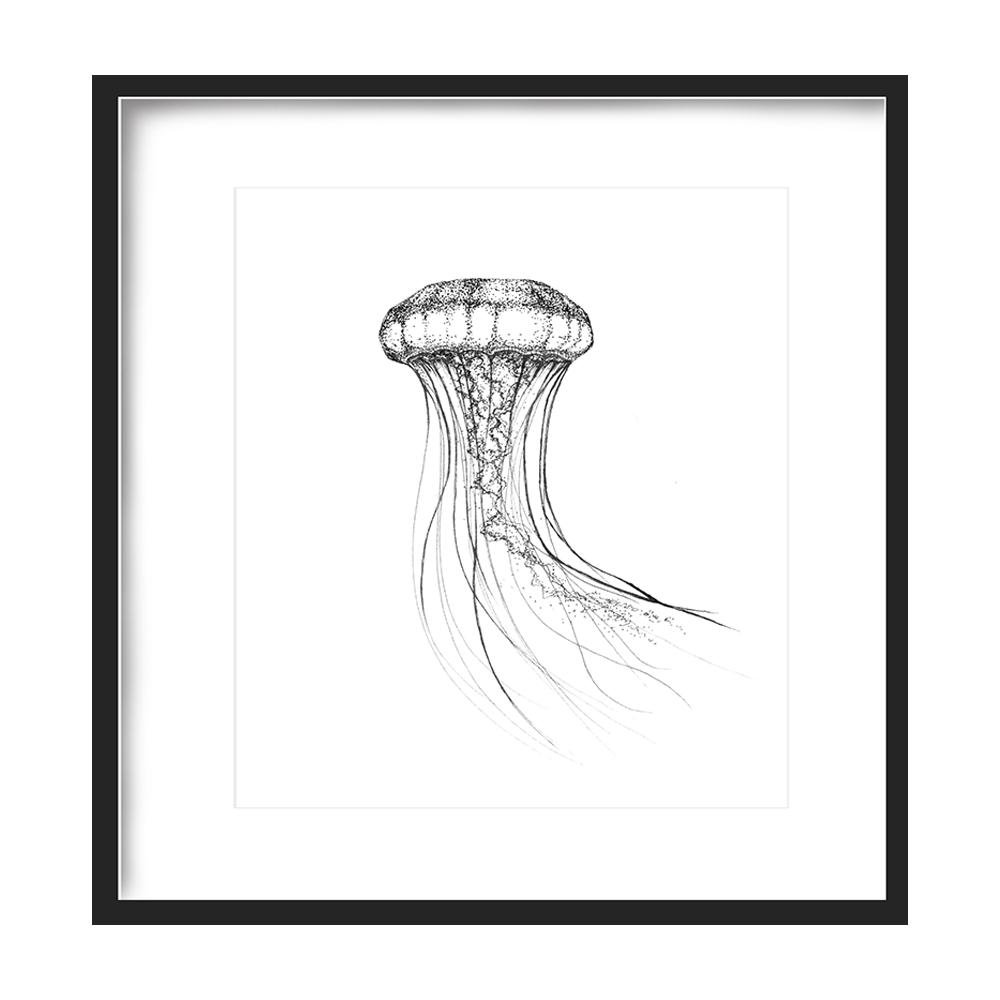 Jellyfish Print 5x5 - $5 -