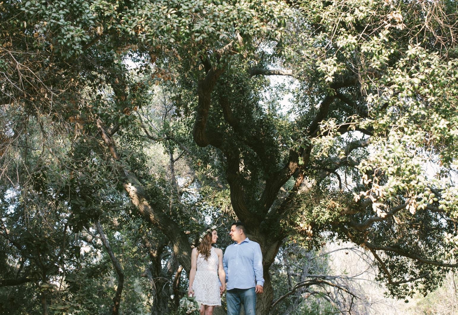 Oak Canyon Nature Engagement