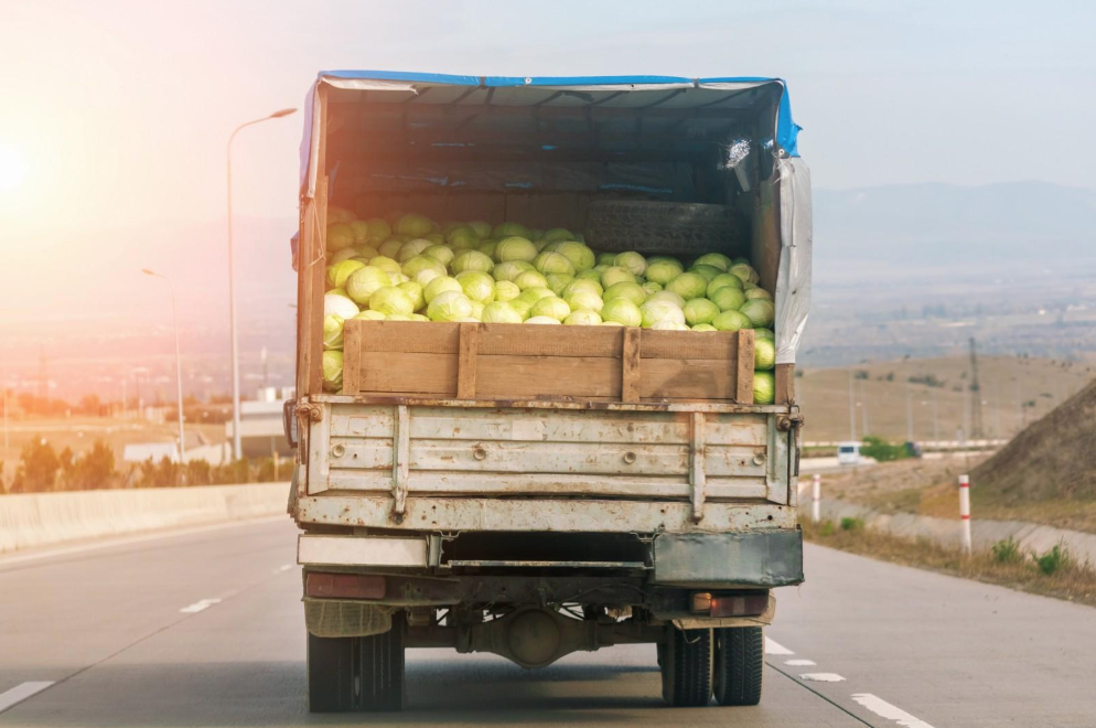Traditional lettuce grown in California or Arizona has to be shipped across the country in trucks like these, often taking up to two weeks in transport. (Photo courtesy of Snova/Shutterstock).