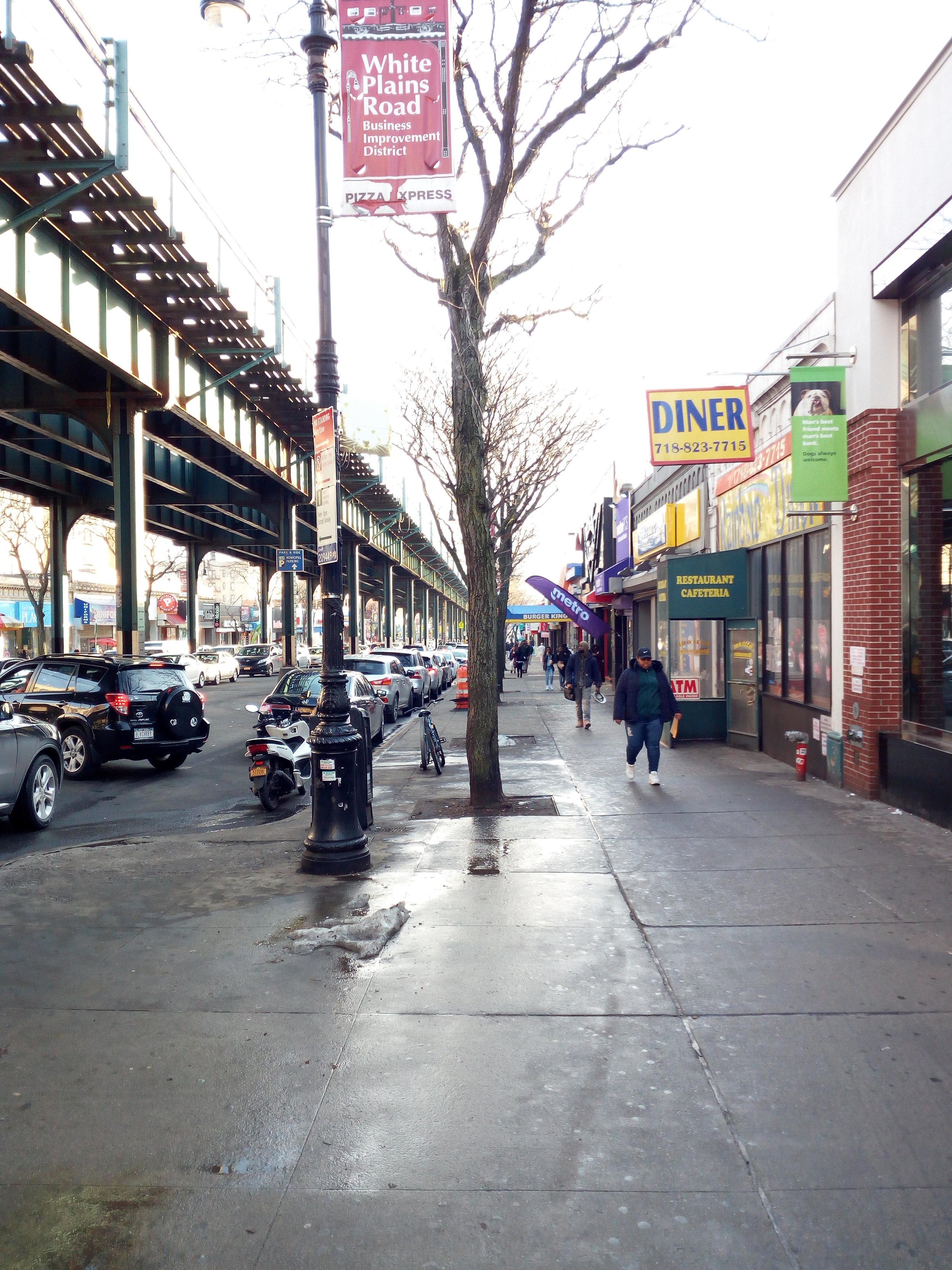 The Bronx -8.jpg