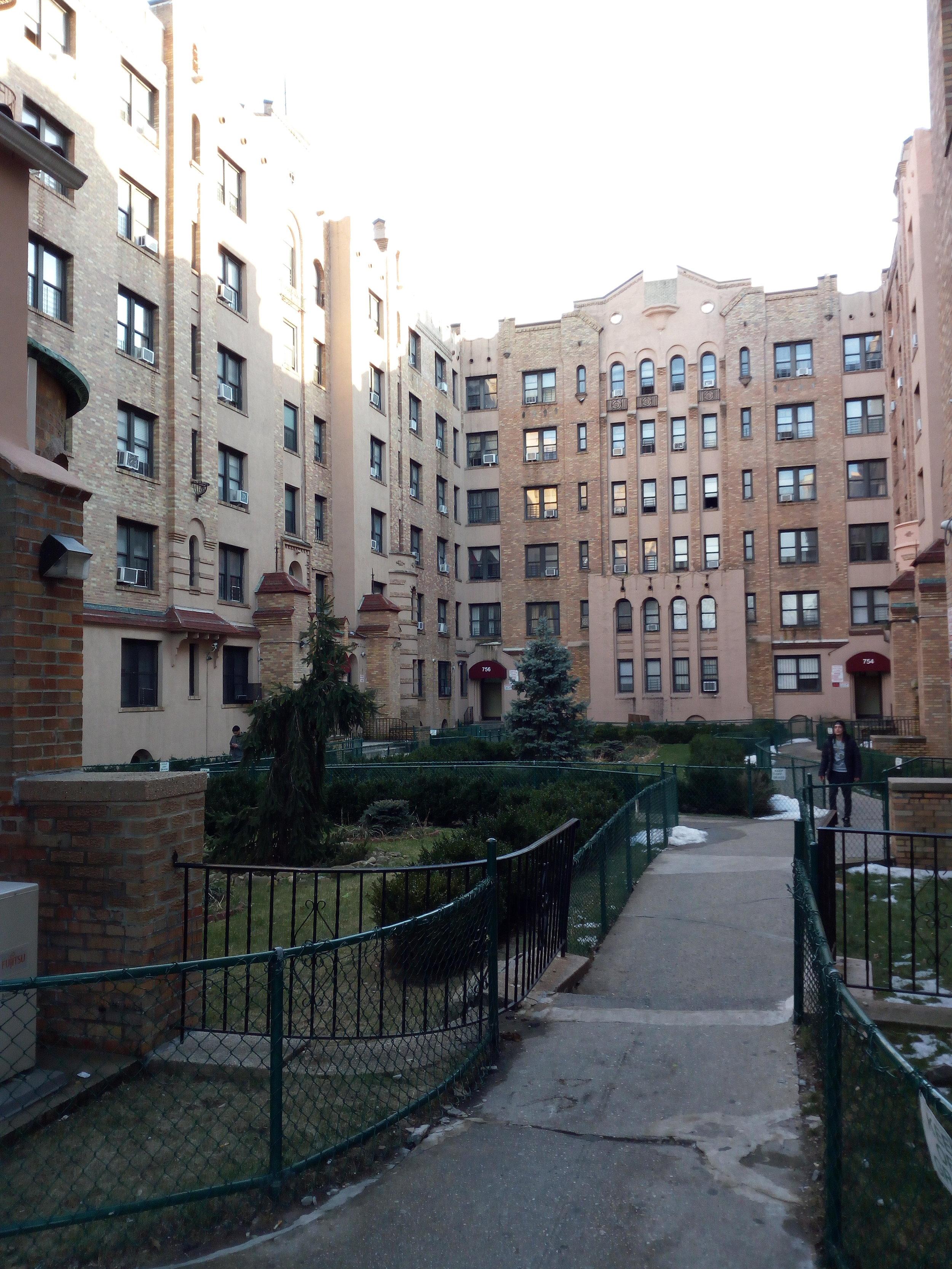 The Bronx -9.jpg