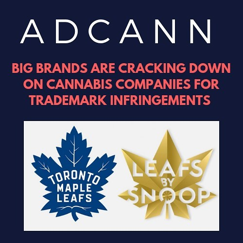 In an industry where strict branding restrictions have already been put in place by the government, cannabis companies are also facing legal pressure from businesses outside of the industry.  UPS is just the latest big brand suing a cannabis company, as other businesses such as The Toronto Maple Leafs and Hershey's have dispatched their legal teams against cannabis brands.  Take a look at five companies who are cracking down on trademark infringement against cannabis brands - link in bio.  adcann.ca/compliance/big-brands-cracking-down-cannabis-companies-trademark-infringements