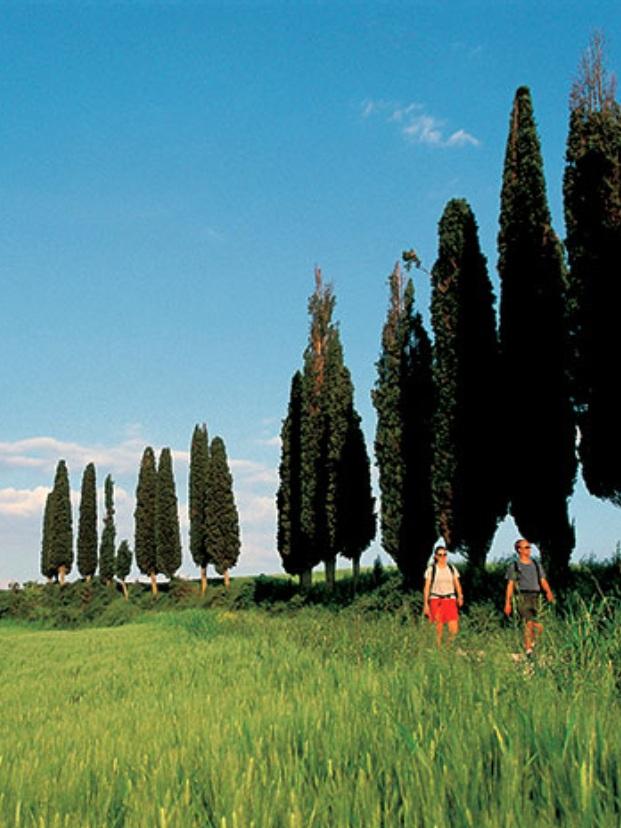 SheTravelsWell_TuscanyTour.jpg