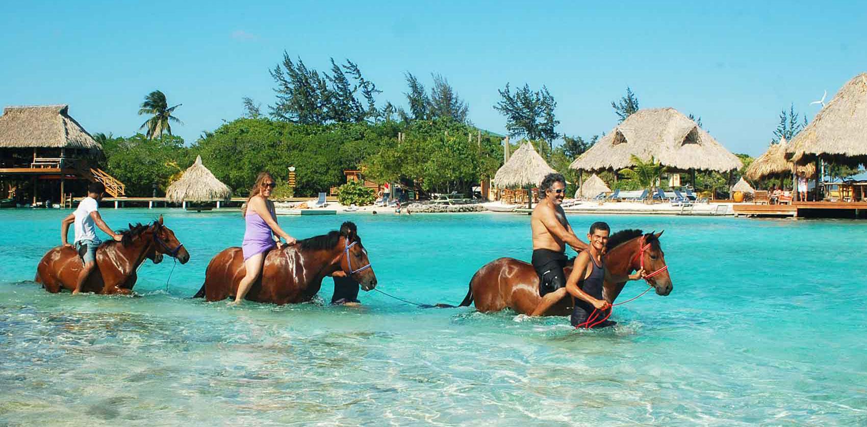 Copy of horseback-riding.jpg