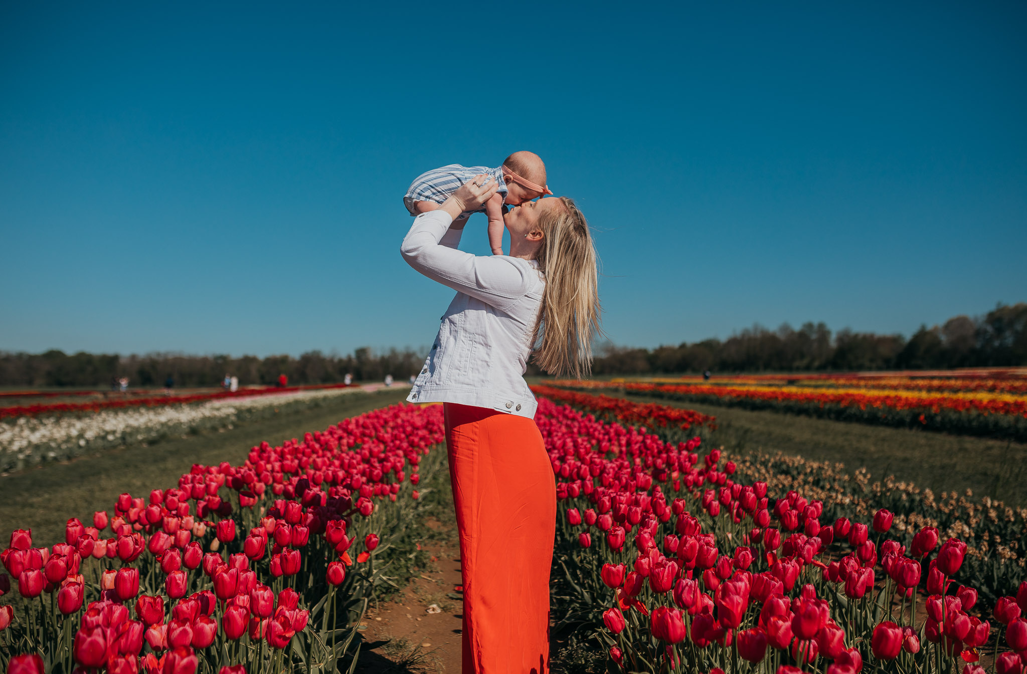 Tulips-4280.jpg