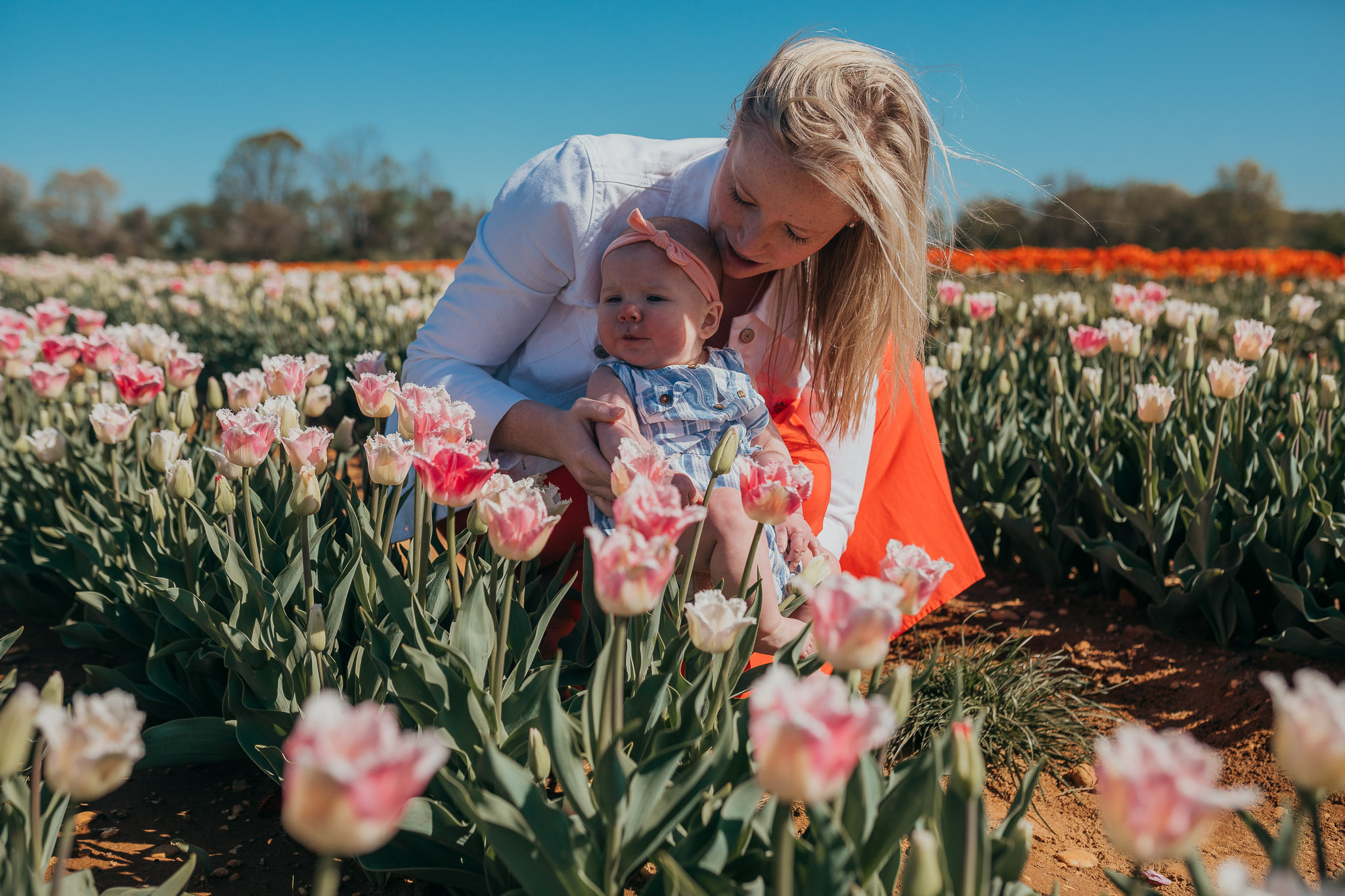 Tulips-4561.jpg