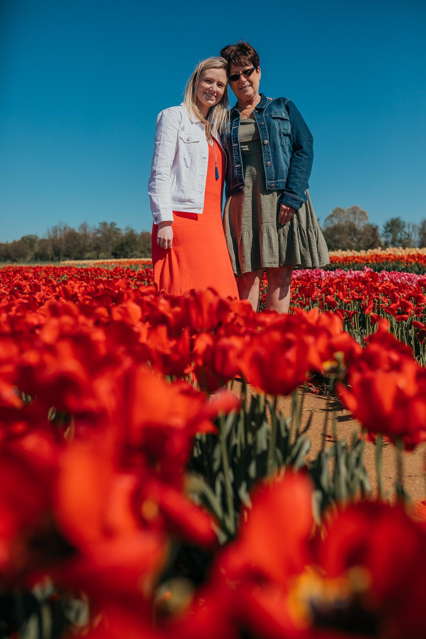 Tulips-4796.jpg