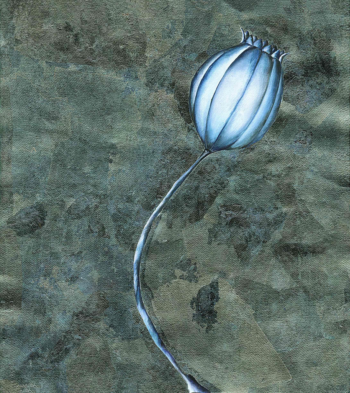 Blue Poppy  2004