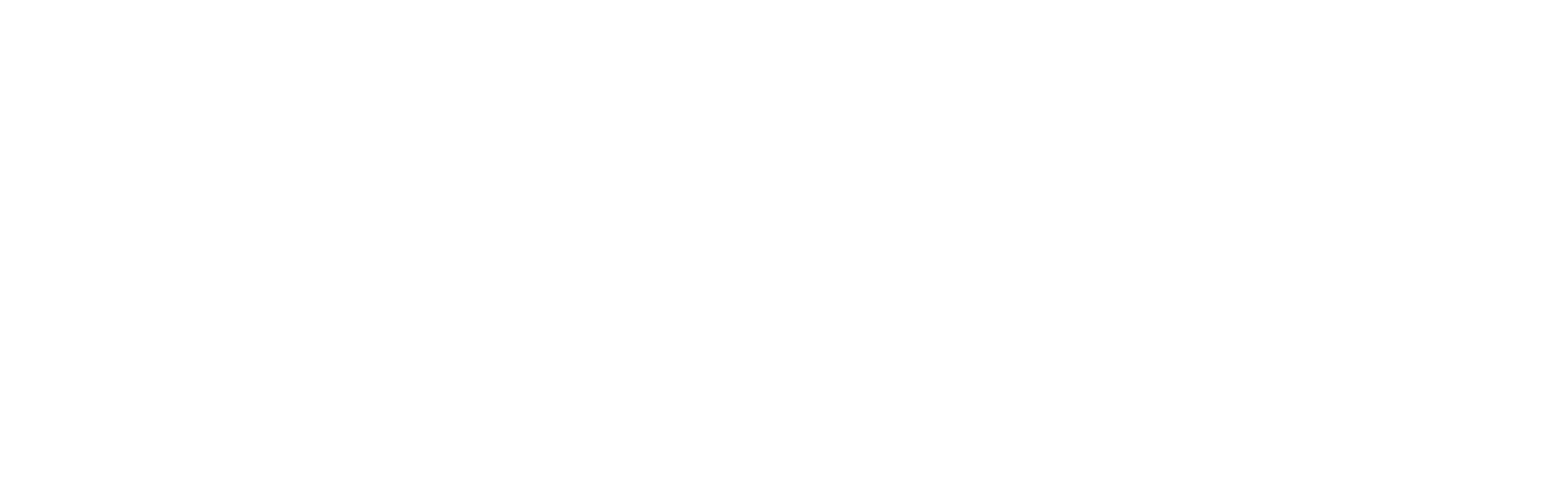 BCS_WHITE.png