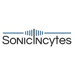 Sonic_sq.png