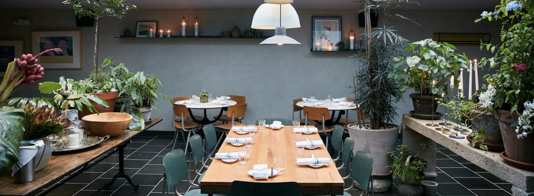 EAT & DRINK_  HAON NOODLE.  #Noodles #NewYorkStyle #Interiors #Fusion   https://haonoodle.com