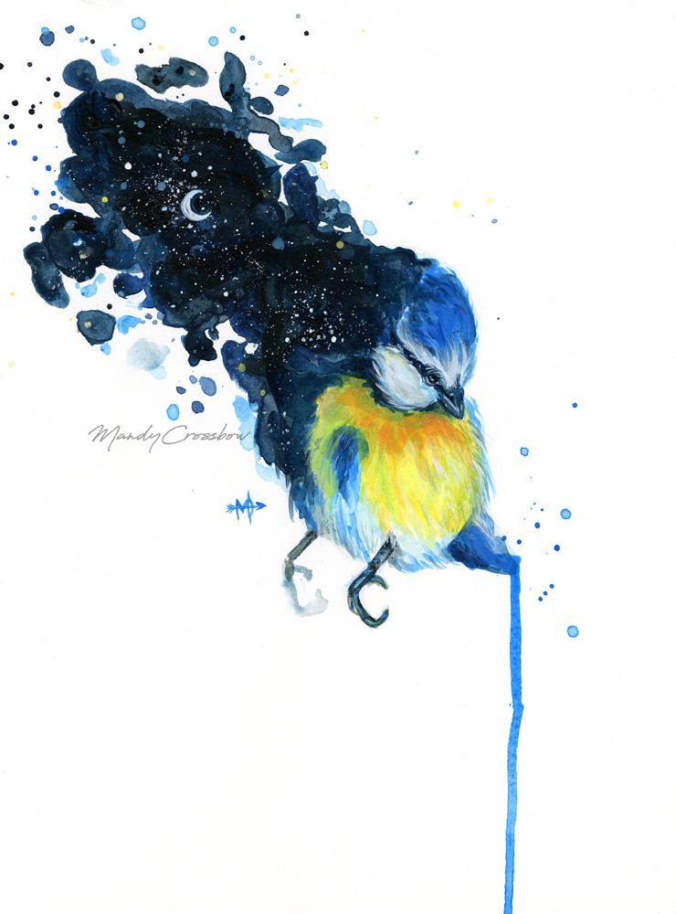 Bluetit-Web.jpg
