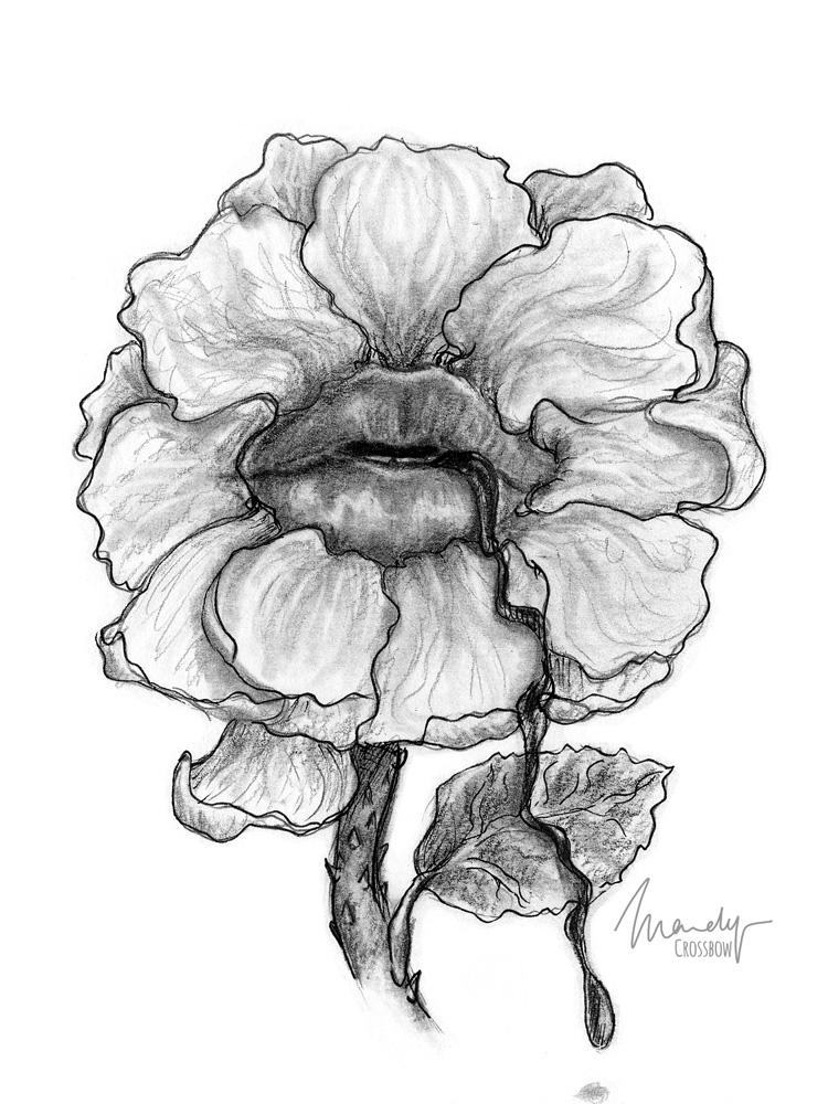 FlowerMouth-Web.jpg